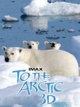 """Постер к документальному фильму """"Арктика 3D"""""""