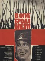 """Постер к фильму """"В огне брода нет"""""""