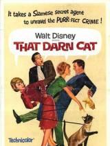 """Постер к фильму """"Эта дикая кошка"""""""