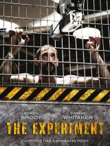 Эксперимент / The Experiment