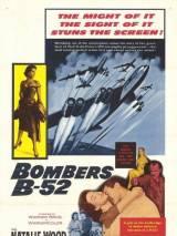 Бомбардировщики Б-52 / Bombers B-52