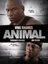 Животное / Animal