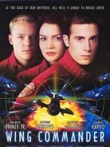 Командир эскадрильи / Wing Commander