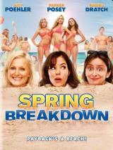 Весенний отрыв / Spring Breakdown