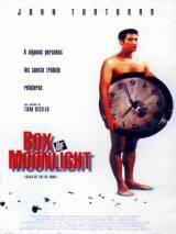 Лунная шкатулка / Box of Moon Light
