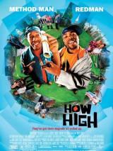 Торчки / How High