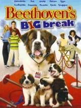 Бетховен: Большой бросок / Beethoven`s Big Break