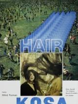 Волосы / Hair