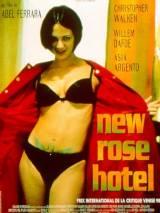 Отель Новая Роза / New Rose Hotel