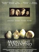 Лунный свет / Moonlight and Valentino
