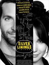 Мой парень - псих / Silver Linings Playbook