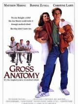 Большая медицина / Gross Anatomy