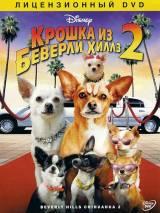 Крошка из Беверли-Хиллз 2 / Beverly Hills Chihuahua 2