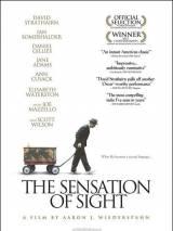 Ощущение видения / The Sensation of Sight