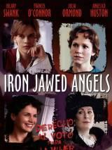 Ангелы с железными зубами / Iron Jawed Angels