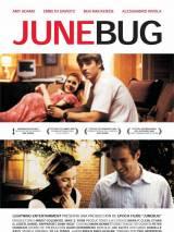 Июньский жук / Junebug