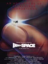 Внутреннее пространство / Innerspace