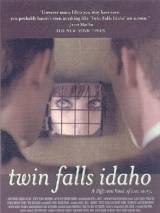Близнецы из Айдахо / Twin Falls Idaho