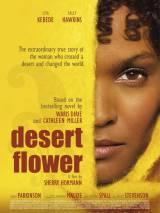 Цветок в пустыне / Desert Flower