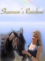 Радуга Шэннона / Shannon`s Rainbow
