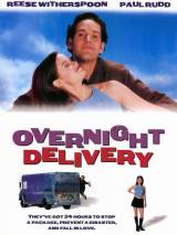 Ночная посылка / Overnight Delivery