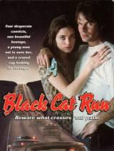 Бег черной кошки / Black Cat Run