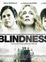 Слепота / Blindness