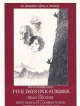 Пять летних дней / Five Days One Summer