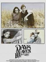 Дни жатвы / Days of Heaven