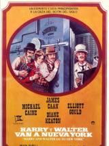 Хэрри и Уолтер едут в Нью-Йорк / Harry and Walter Go to New York
