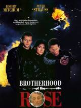 Братство розы / Brotherhood of the Rose