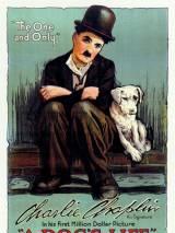 Собачья жизнь / A Dog`s Life