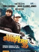 Убойные серферы / Storm Surfers 3D