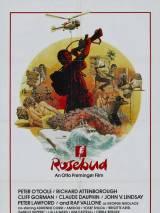 Бутон розы / Rosebud