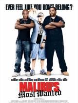 Разыскиваются в Малибу / Malibu`s Most Wanted