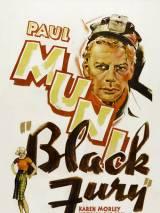 Черная ярость / Black Fury