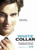 Белый воротничок / White Collar