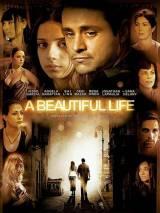 Красивая жизнь / A Beautiful Life