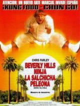 Ниндзя из Беверли Хиллз / Beverly Hills Ninja