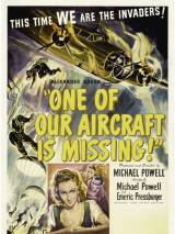 Один из наших самолетов не вернулся / One of Our Aircraft Is Missing