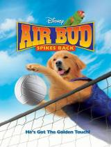 Король воздуха: Возвращение / Air Bud: Spikes Back