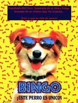 Бинго / Bingo