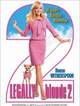 """Постер к фильму """"Блондинка в законе 2"""""""