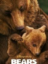 Медведи / Bears