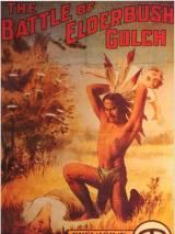 Битва при Элдербушском ущелье / The Battle at Elderbush Gulch
