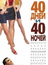 """Постер к фильму """"40 дней и 40 ночей"""""""