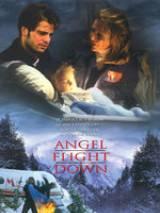 "Падение борта ""Ангел"" / Angel Flight Down"
