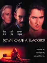 И спустился ворон / Down Came a Blackbird