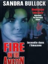 Амазонка в огне / Fire on the Amazon