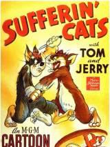 К чему приводит жадность / Sufferin` Cats!